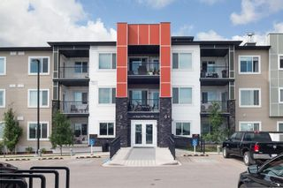 Photo 23: 204 16 Sage Hill Terrace NW in Calgary: Sage Hill Apartment for sale : MLS®# A1127295