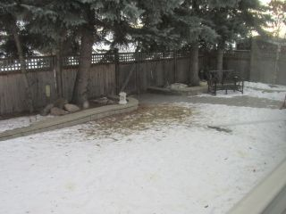 Photo 32: 45 Amherst Crescent in St. Albert: House for sale or rent