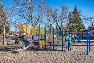 Photo 50: 543 Lake Newell Crescent SE in Calgary: Lake Bonavista Detached for sale : MLS®# A1081450
