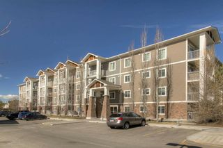 Photo 27: 301 102 Cranberry Park SE in Calgary: Cranston Apartment for sale : MLS®# A1082779