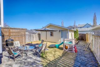 Photo 32: 10 Inverness Place SE in Calgary: McKenzie Towne Detached for sale : MLS®# A1095594