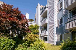 Photo 11: 203 7465 SANDBORNE Avenue in Burnaby: South Slope Condo for sale (Burnaby South)  : MLS®# R2188768