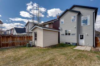 Photo 22: 13 Auburn Bay View SE in Calgary: Auburn Bay Detached for sale : MLS®# A1099735