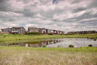 Photo 37: 171 AUBURN MEADOWS Place SE in Calgary: Auburn Bay House for sale : MLS®# C4119383