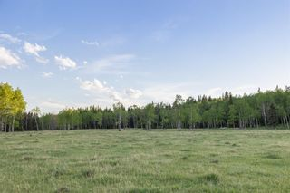 Photo 30: 231175 Bracken Road in Rural Rocky View County: Rural Rocky View MD Land for sale : MLS®# A1116621