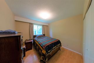 Photo 12: 24039 ROBERTSON Crescent in Langley: Salmon River House for sale : MLS®# R2348566