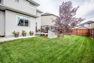 Photo 48: 187 Cranford Green SE in Calgary: Cranston Detached for sale : MLS®# A1092589