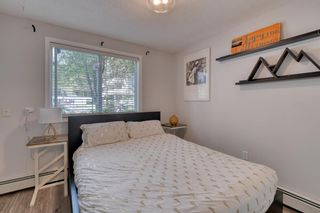 Photo 27: 102 881 15 Avenue SW in Calgary: Beltline Apartment for sale : MLS®# A1120735