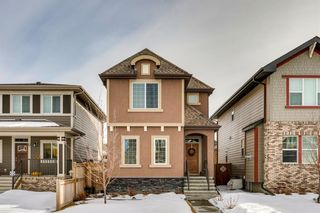 Main Photo: 40 Marquis Green SE in Calgary: Mahogany Detached for sale : MLS®# A1075129