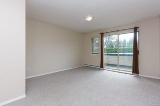Photo 15: 207 1270 Johnson St in : Vi Downtown Condo for sale (Victoria)  : MLS®# 869556
