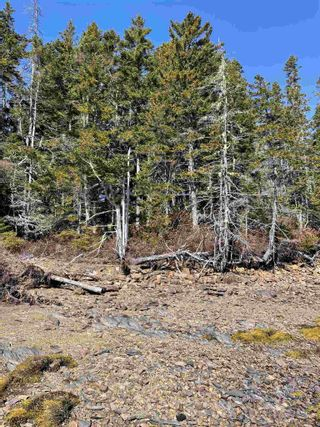 Photo 6: Highway 332 in Bayport: 405-Lunenburg County Vacant Land for sale (South Shore)  : MLS®# 202118989
