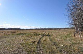 Photo 17: 10 57126 Range Road 12: Rural Barrhead County Rural Land/Vacant Lot for sale : MLS®# E4241768