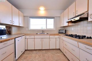 Photo 14: 869 Rockheights Ave in VICTORIA: Es Rockheights House for sale (Esquimalt)  : MLS®# 744469