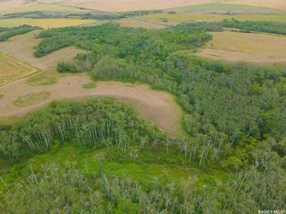 Photo 10: Rm Indian Head 160.39 acres in Indian Head: Farm for sale (Indian Head Rm No. 156)  : MLS®# SK867616