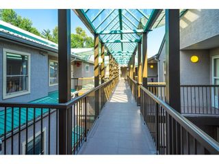 """Photo 25: 419 33165 2ND Avenue in Mission: Mission BC Condo for sale in """"MISSION MANOR"""" : MLS®# R2600584"""