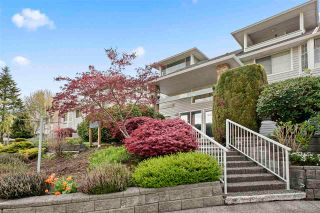 "Photo 1: 108 11578 225 Street in Maple Ridge: East Central Condo for sale in ""The Willows"" : MLS®# R2573953"