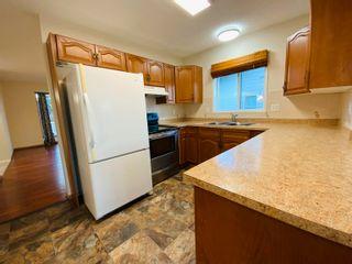 Photo 24: 117 Cameron Crescent: Wetaskiwin House for sale : MLS®# E4265298