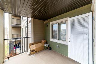 Photo 28: 209 25 Element Drive N: St. Albert Condo for sale : MLS®# E4240193