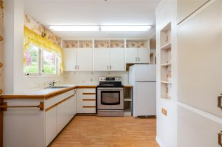 """Photo 8: 1259 DOGWOOD Crescent in North Vancouver: Norgate House for sale in """"NORGATE"""" : MLS®# R2576950"""