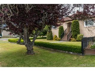 Photo 15: 3102 Earl Grey St in VICTORIA: SW Gorge House for sale (Saanich West)  : MLS®# 735746