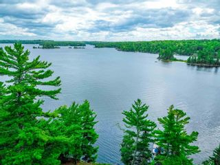 Photo 4: 48 LILY PAD BAY in KENORA: Recreational for sale : MLS®# TB202607