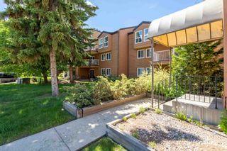 Photo 17: 211 20 ALPINE Place: St. Albert Condo for sale : MLS®# E4248468