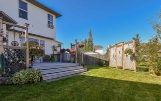 Photo 32: 19 Coral Springs Green NE in Calgary: Coral Springs Detached for sale : MLS®# A1064620
