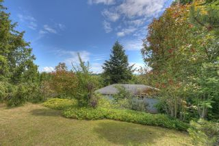 Photo 5: 6628 Rey Rd in : CS Tanner House for sale (Central Saanich)  : MLS®# 851705