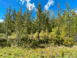 """Photo 5: LOT 7 S SOMERSET Drive: Cluculz Lake Land for sale in """"SOMERSET ESTATES"""" (PG Rural West (Zone 77))  : MLS®# R2596563"""