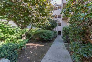 "Photo 9: 414 1363 CLYDE Avenue in West Vancouver: Ambleside Condo for sale in ""PLACE FOURTEEN"" : MLS®# R2504300"