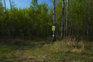 Photo 25: RR 21 TWP 565A Lake Nakamun: Rural Lac Ste. Anne County Rural Land/Vacant Lot for sale : MLS®# E4246330
