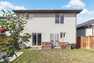 Photo 29: 39 Canoe Square SW: Airdrie Semi Detached for sale : MLS®# A1141255