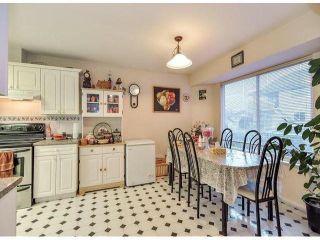 Photo 11: 12062 201B ST in Maple Ridge: Northwest Maple Ridge House for sale : MLS®# V1040907