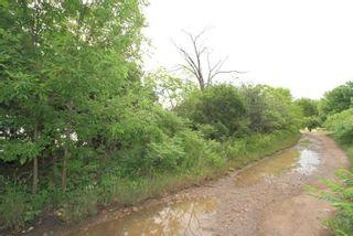 Photo 8: Lt 1&2 Shore Road in Brock: Rural Brock Property for sale : MLS®# N5281421