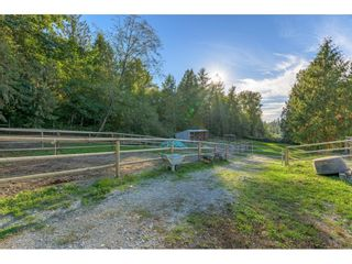 Photo 35: 1395 242ND Street in Langley: Otter District House for sale : MLS®# R2620231