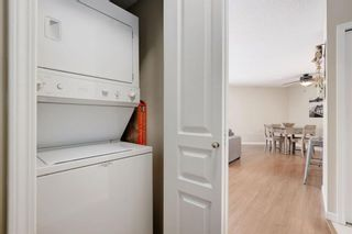 Photo 16: 102 25 Richard Place SW in Calgary: Lincoln Park Apartment for sale : MLS®# A1106897