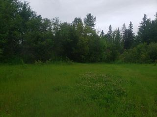 Photo 4: 831 Pelican Road: Rural Opportunity M.D. Rural Land/Vacant Lot for sale : MLS®# E4252453