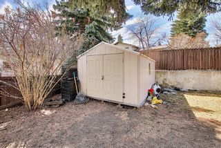 Photo 33: 687 Brookpark Drive SW in Calgary: Braeside Detached for sale : MLS®# A1093005
