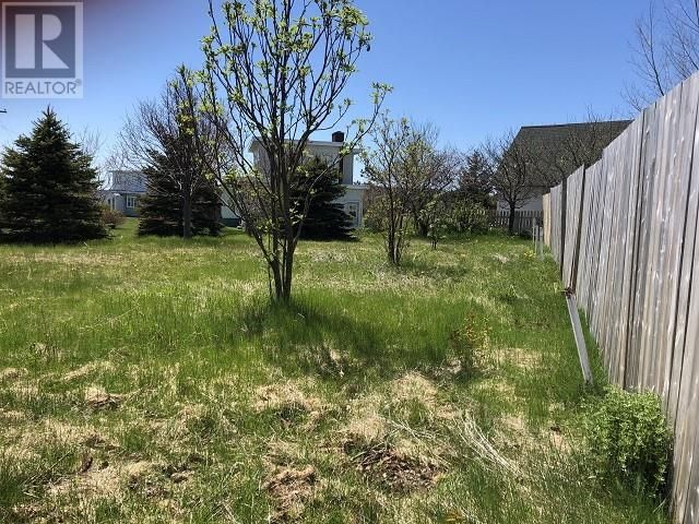 Main Photo: 65 Ohio Drive in Stephenville: Vacant Land for sale : MLS®# 1234009