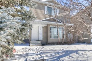 Main Photo: 355 Martinbrook Place NE in Calgary: Martindale Detached for sale : MLS®# A1095824