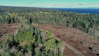 Photo 8: LT 189 Ellenor Rd in : CV Comox Peninsula Land for sale (Comox Valley)  : MLS®# 858998