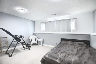 Photo 21: 67 Penmeadows Place SE in Calgary: Penbrooke Meadows Detached for sale : MLS®# A1066670