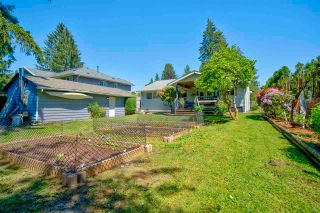 Photo 25: 12147 FLETCHER Street in Maple Ridge: East Central House for sale : MLS®# R2588036