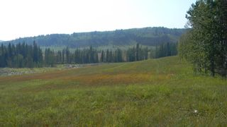 Photo 10: Corner of 178 Ave & 336 St W: Rural Foothills County Land for sale : MLS®# A1053038