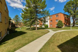 Photo 37: 205 11430 40 Avenue in Edmonton: Zone 16 Condo for sale : MLS®# E4258318