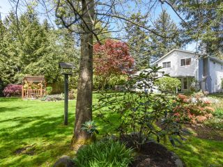 Photo 4: 4807 Alton Pl in COURTENAY: CV Courtenay East House for sale (Comox Valley)  : MLS®# 813474