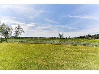 Photo 7: 2025 232 STREET in Langley: Campbell Valley House for sale : MLS®# R2071050
