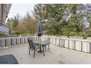 Photo 40: 12387 MOODY Street in Maple Ridge: West Central House for sale : MLS®# R2258400
