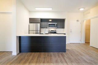 Photo 5: 203 50 Philip Lee Drive in Winnipeg: Crocus Meadows Condominium for sale (3K)  : MLS®# 202114301