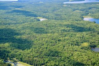 Photo 5: 16536 Rainy Lake in Fort Frances: Vacant Land for sale : MLS®# TB212374